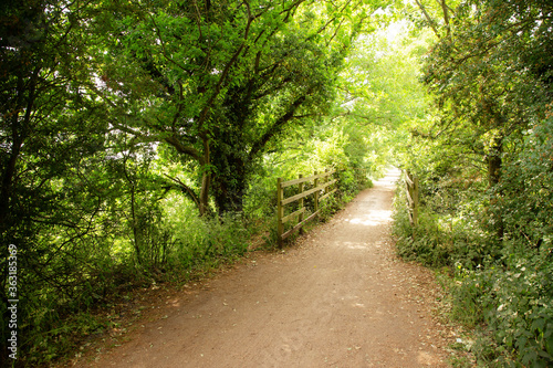 Fototapeta old railway lines now cycle paths and foot paths