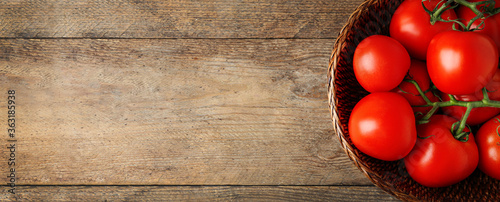 Fototapeta Top view of bowl with fresh tomatoes on wooden, space for text. Banner design obraz