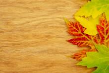 Autumn Concept Background. Lea...