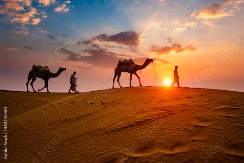 Fényképezés Indian cameleers (camel driver) bedouin with camel silhouettes in sand dunes of Thar desert on sunset