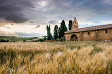 Old Chapel And Wheat Fields Be...