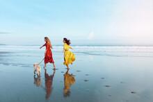 Summer. Women On Dog-Friendly ...