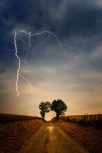 Scenic View Of Tree On Field Against Sky