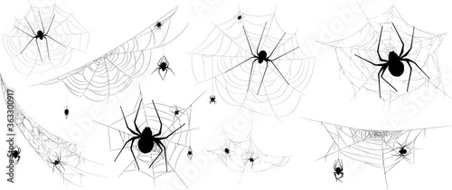 Collection of Spider, cobweb, isolated on black, transparent background Wallpaper Mural