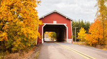 Shimanek Covered Bridge With Fall Color Trees In A Rural Area Near Scio, Oregon.