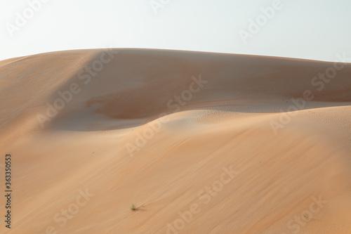 Photographie Sand Dunes In Desert Against Sky