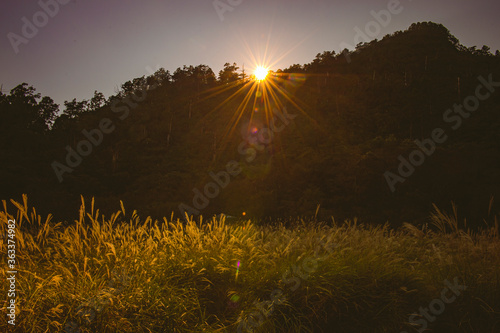 Scenic View Of Field Against Sky During Sunset #363374982