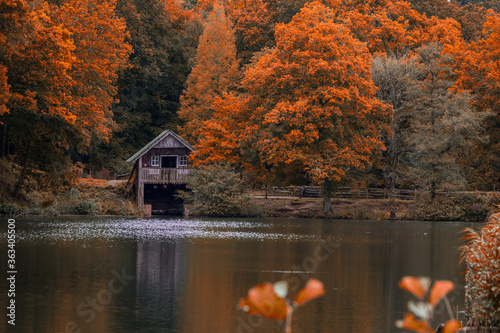 Scenic View Of Lake And Boathouse In Forest During Autumn Canvas Print