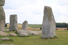 The Pre-historic Stone Formati...