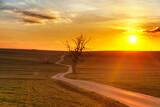 wschód słońca na Sułoszowskich polach