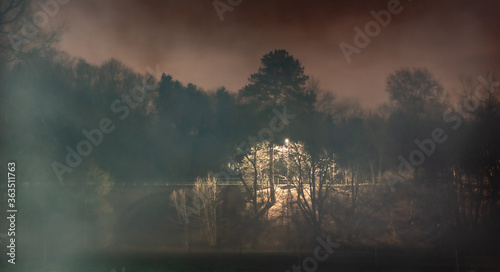 Canvas Print Trees By Lake Against Sky During Foggy Weather