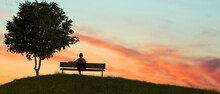 A Man Sitting On A Bench In Nature Outdoor Sunset.