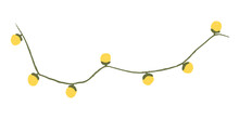 Christmas Garland. Holiday Lig...