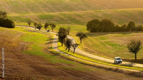 Fotomural Traveling By Car In Spring Undulating Fields Of South Moravia In The Evening Light