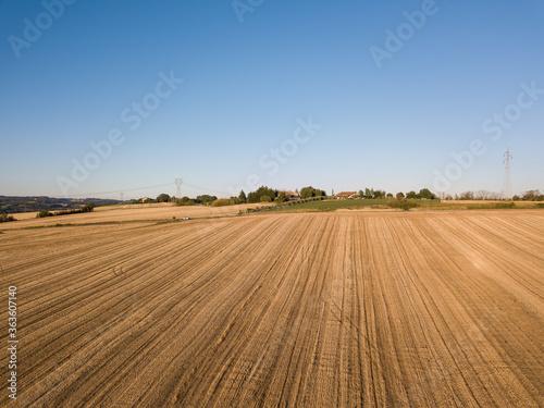 Fotografie, Obraz campi di grano con strada sulle colline di Pesaro Marche Italia