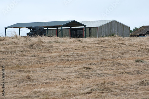 Photo farmyard barn with dried grass fodder