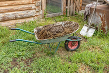 Cart With Natural Cow Manure S...