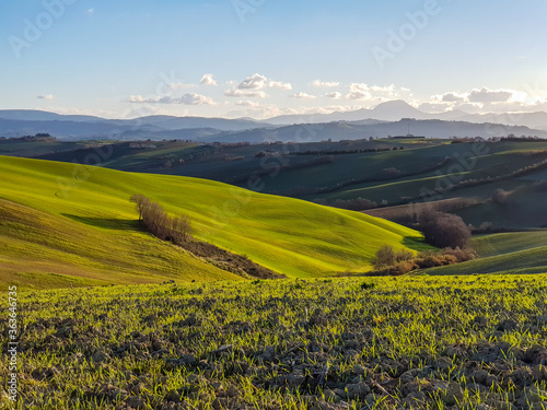 Scenic View Of Agricultural Field Against Sky Jn Marche Region Italy