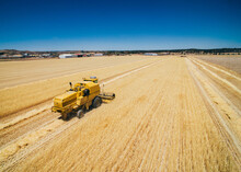 Yellow Tractor Plowing Field A...