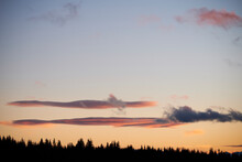 Sunset Clouds And Forest Silho...