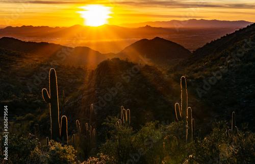 Fototapeta Scenic View Of Mountains And Saguaro Cactus During Sunset obraz