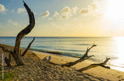 Valokuva CLOSE UP: Scenic view of a wild beach in the Caribbean at stunning golden sunset