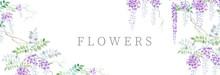 Beautiful Watercolor Wisteria Flower Illustration