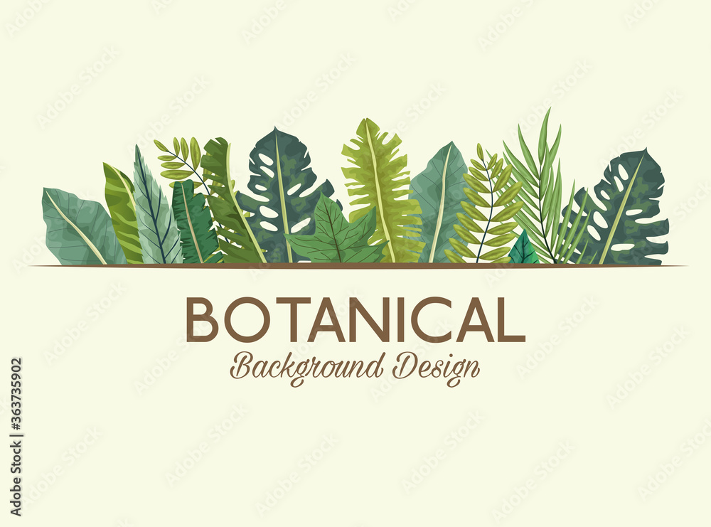 Fototapeta tropical leafs and lettering botanical background design