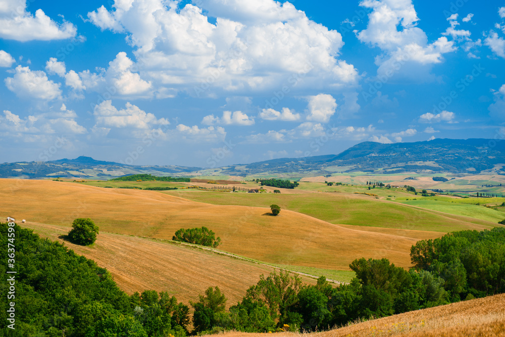 Fototapeta Scenic View Of Agricultural Landscape Against Sky