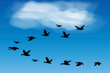Flying Birds In The Blue Sky. Black Silhouettes Of Pigeons Swallows. Realistic Sketch Of A Flock Of Birds. Vector Image. Stock Photo.