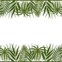 Border Frame With Tropical Lea...