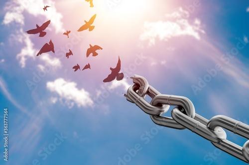 Freedom. - fototapety na wymiar