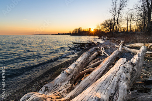 Scenic View Of Driftwood Against Sky During Sunset Wallpaper Mural