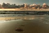 Fototapeta Kamienie - Morze zachód słońca - Bałtyk wyspa Wolin
