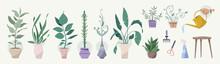 Green Plants In Pots, Gardenin...