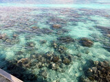 Fototapeta Kuchnia - Top view of the sea with the coral reefs at Maldives island.