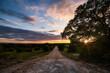 Leinwandbild Motiv Road Amidst Trees Against Sky During Sunset