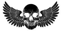 A Winged Skull Graphic. Origin...