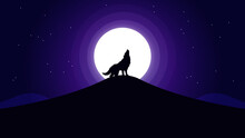 Wolf Night Iluustration Create...