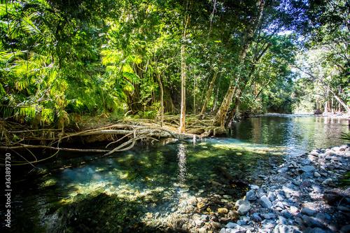 Fototapety, obrazy: Daintree River Crossing Queensland Australia