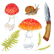Watercolor Set Of Fly Agaric Mushroom With Grass, Snail And Wooden Knife. Isolated On White Background.