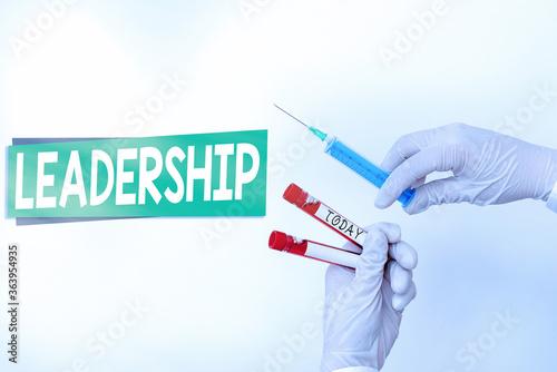 Word writing text Leadership Wallpaper Mural