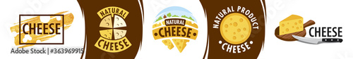 Fototapeta Vector logo of the cheese production company obraz