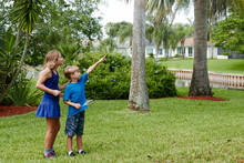 Children Exploring Nature In Their Neighborhood, Collecting Scavenger Hunt Items And Pointing At A Bird Nest