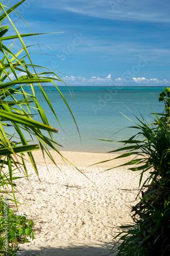 沖縄県 小浜島のビーチ Canvas-taulu