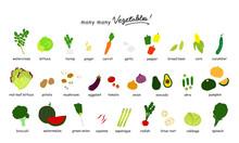 いろんな野菜のカラー...