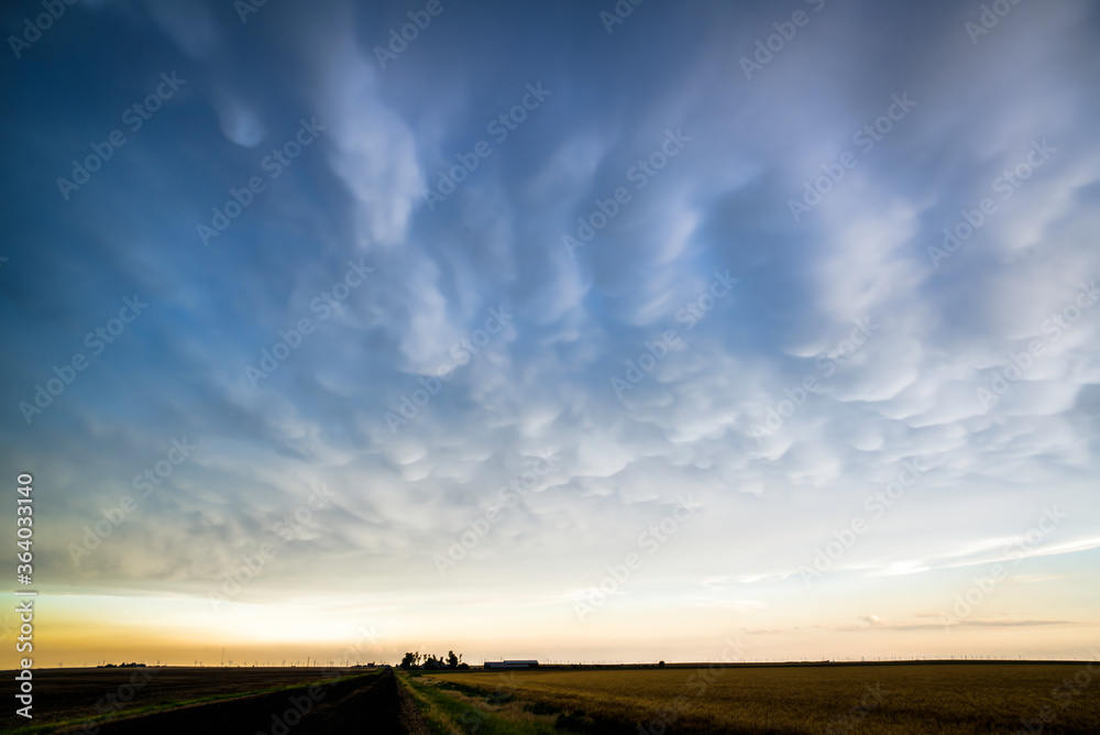 Fototapeta Mammatus Clouds on the Great Plains Suring Summertime Severe Weather