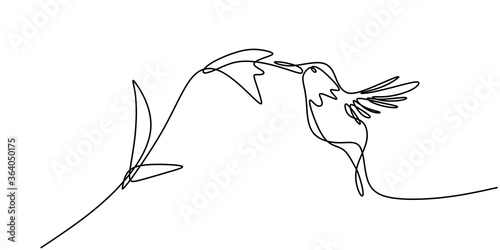 Photo Continuous one line drawing of hummingbird minimalism drawing