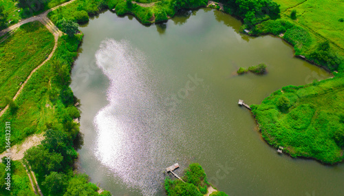 Photo Aerial view of natural pond surrounded by pine trees