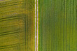 canvas print picture - Farmland from Above